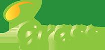 Century Grass S.L. Logo