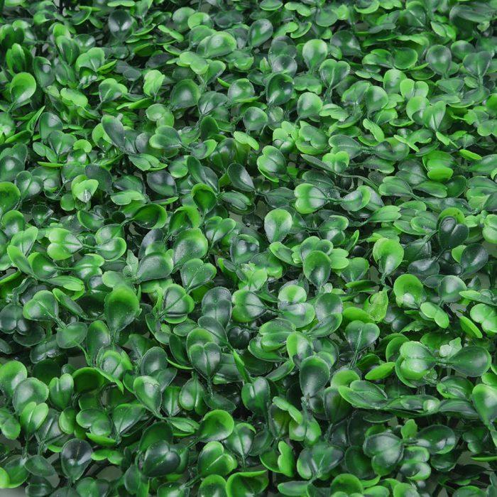 Jardines Verticales Artificiales - Variedad Boj