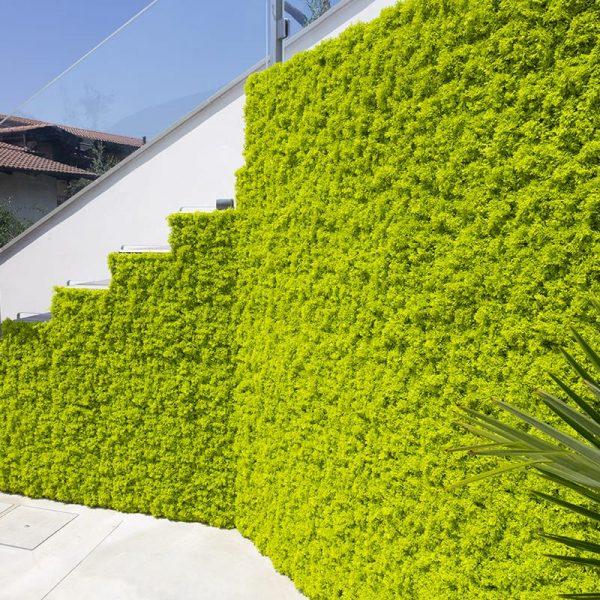 Jardines Verticales Artificiales en Madrid - Venta e Instalación