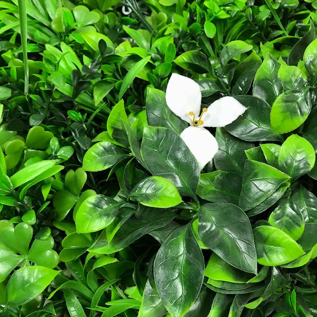Jardines Verticales Artificiales - Variedad Amazonía